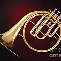 Antique French Horn On Deep Red by M K Miller
