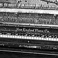 Antique Piano Black And White by Phyllis Denton