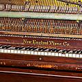 Antique Piano by Phyllis Denton