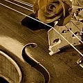 Antique Violin Viola by M K  Miller