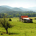 Apalachia by David Lee Thompson