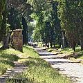 Appian Way In Rome by David Smith
