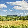 Apple Trees And Hay Field In Summer Maine by Keith Webber Jr
