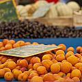 Apricot Season by Georgia Fowler