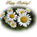 April Birthday by Kristin Elmquist