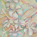 Apsara Flower  by Hay Chhoem