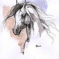 Arabian Horse Ink Drawing 1 by Angel Ciesniarska