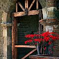 Arch At Mission San Juan Capistrano by Cliff Wassmann