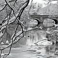 Arch Bridge Over Frozen River In Winter by Enzo Figueres