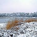 Ardingly Reservoir - Winter Snowy Scene by Ollie Relfe
