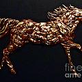 Arizona Fire Horse by Tonia Antilla