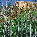 Arizona High Country by Don Monahan