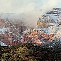 Arizona Snowstorm by Judy Wanamaker