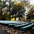 Army Cannons In A Row by Army Athletics