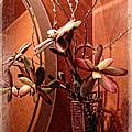 Arrangement In Mirror by Joan  Minchak