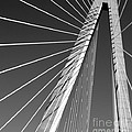 Arthur Ravenel Jr.bridge by Melody Jones