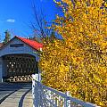 Ashuelot Covered Bridge And Forsythia by John Burk