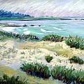 Asilomar Beach by Karin  Leonard