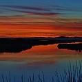 Assateague Bayside Sunset by William Bartholomew