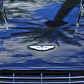 Aston Martin Hood 2 by Jill Reger