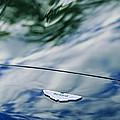 Aston Martin Hood Emblem 3 by Jill Reger