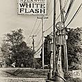 Atlantic White Flash by Bill Cannon