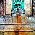Au Non Potable A Fountain In Arles by Greg Matchick