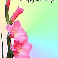 August Birthday by Kristin Elmquist