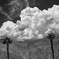 August Clouds Palm Springs by William Dey