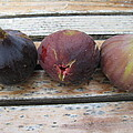 Figs On A Table  by Susan Carella
