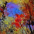 Autumn 458963 by Pol Ledent