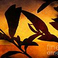 Autumn Abstract by Ellen Cotton