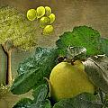 Autumn Apple by Manfred Lutzius