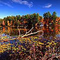 Autumn At Bomoseen Lake  by Rob Hawkins