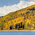 Autumn At Huntington Reservoir - Wasatch Plateau - Utah by Gary Whitton