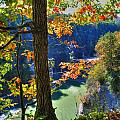 Autumn At Letchworth State Park by Michael Frank Jr