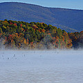 Autumn Backdrop by Douglas Barnard