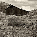 Autumn Barn Sepia by Steve Harrington