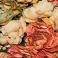 Autumn Blossoms by Dora Sofia Caputo Photographic Design and Fine Art
