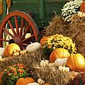 Autumn Bounty Vertical by Kathy Clark