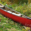 Autumn Canoe by Thomas R Fletcher