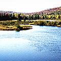 Adirondack Lake 38  by David Patterson