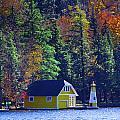Autumn Color 5 by David Patterson