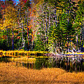 Adirondack Color 52 by David Patterson