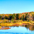 Adirondack Color 54 by David Patterson