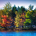 Adirondack Color 63 by David Patterson