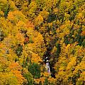 Autumn Colour And Waterfalls, Cape by John Sylvester