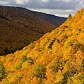 Autumn Colours At North Mountain by John Sylvester