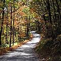 Autumn Country Lane by David Dehner