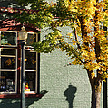 Autumn Detail In Old Town Grants Pass by Mick Anderson